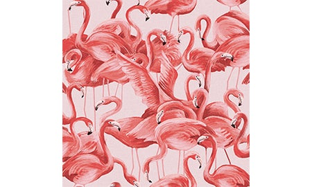 Coral Flamingo Wallpaper