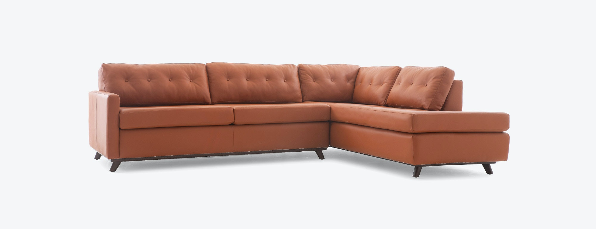 Hopson Leather Bumper Sleeper Sectional By Joybird